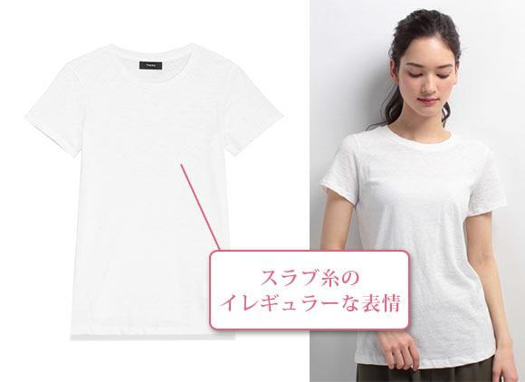セオリーTシャツ3
