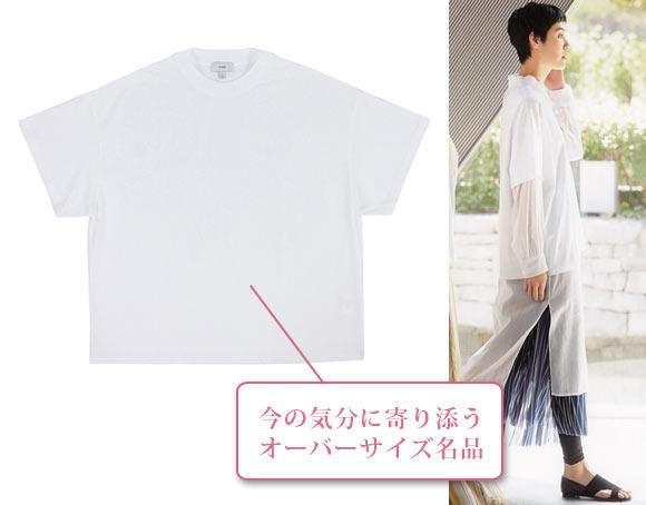 ハイク Tシャツ
